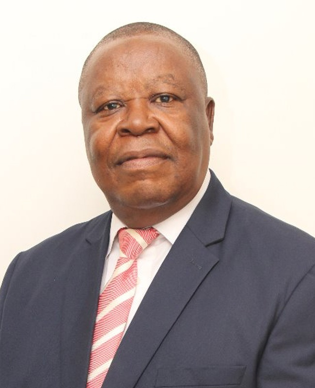 Chief Onyenwechukwu Patrick Ezeagu